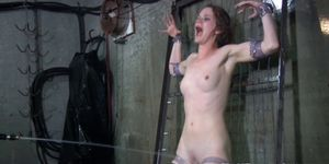 BDSM bondage sub cattle prodded