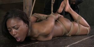 Hogtied black bdsm submissive paddled on the floor
