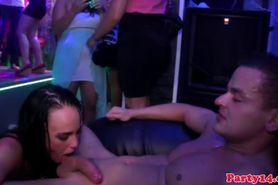 Orgy loving sluts pounded with cock