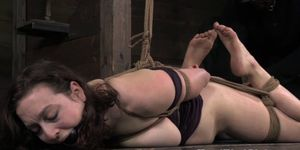 Tied up sub punished with cane by dyke