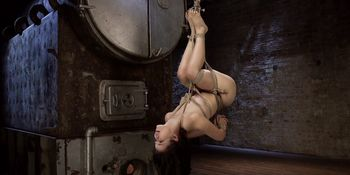 Hogtied Asian in rope suspension upside down